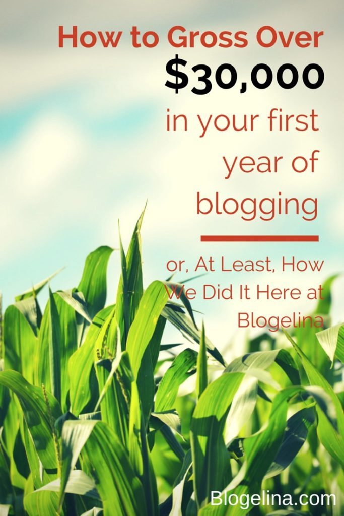 How to Gross Over 30,000 in your first year of blogging  Blogelina