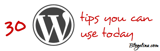 30wordpress tips
