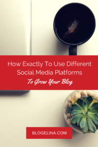 How Exactly To Use Different Social Media Platforms To Grow Your Blog - Blogelina (1)