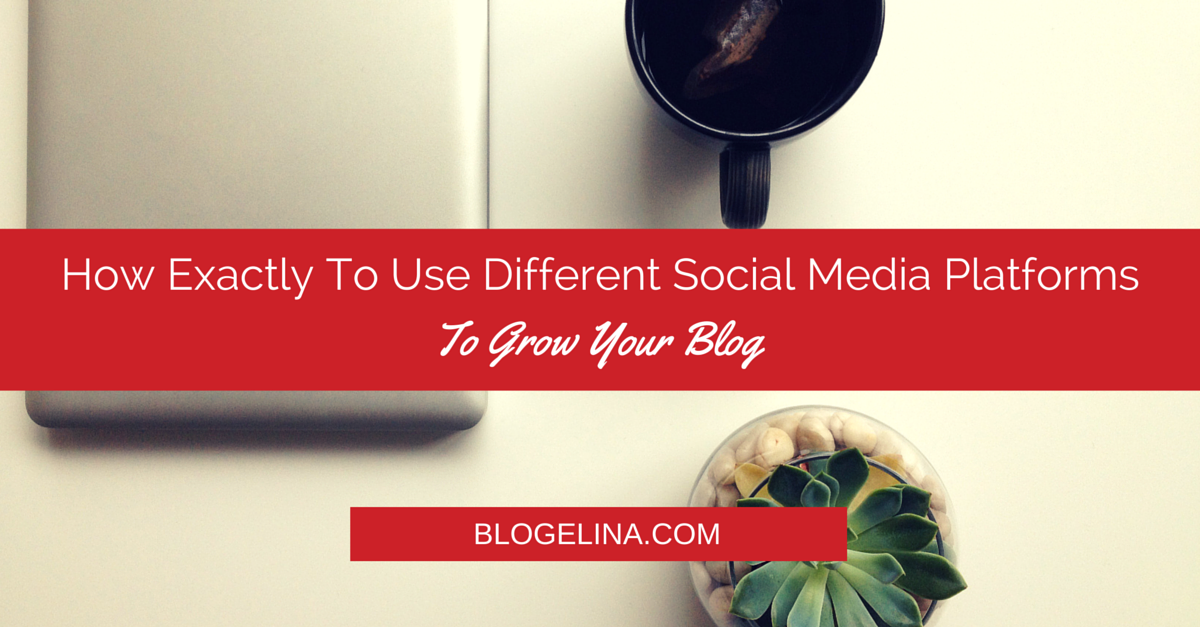 How Exactly To Use Different Social Media Platforms To Grow Your Blog - Blogelina