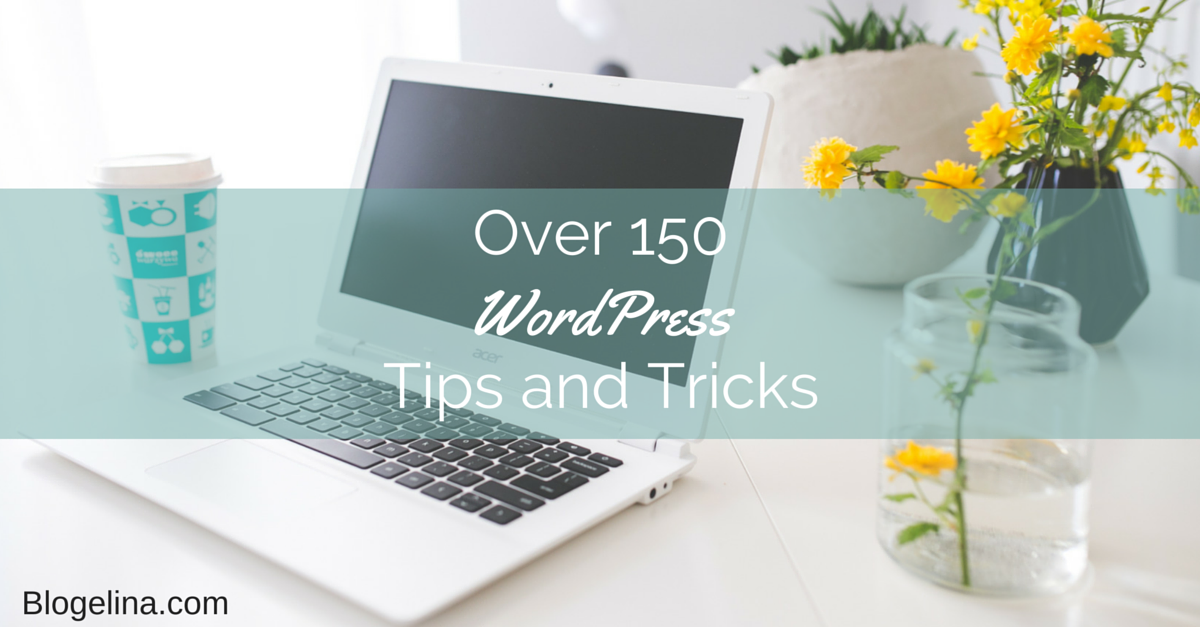 Over 150 WordPress Tips and Tricks - Blogelina.