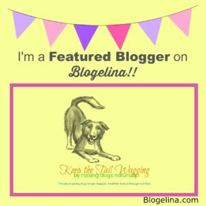 I'm a Featured Blogger - Blogelina - Keep The Tail Wagging